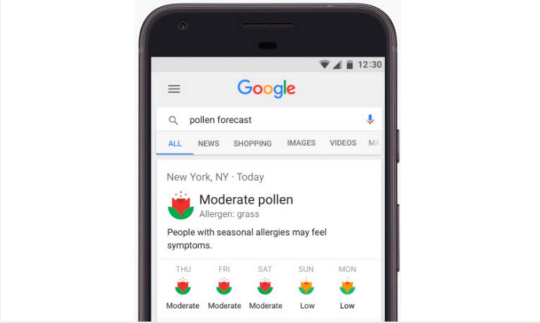 New Google App for Pollen Information