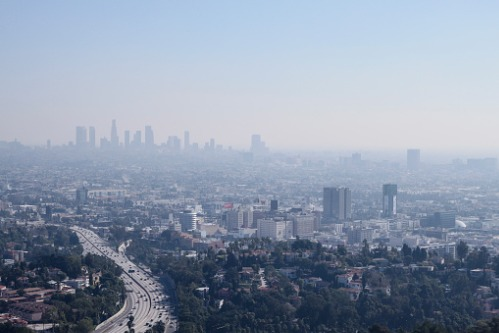 How Air Quality Affects Asthma