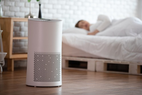 Benefits of Air Purifiers for Indoor Allergies