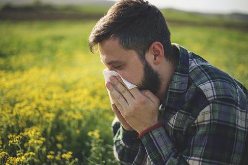 5-most-common-allergies